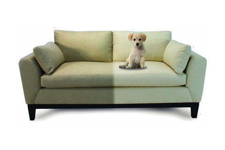 Tapizado de sofas more galeria murano mod impulso sofs - Como limpiar un sofa ...